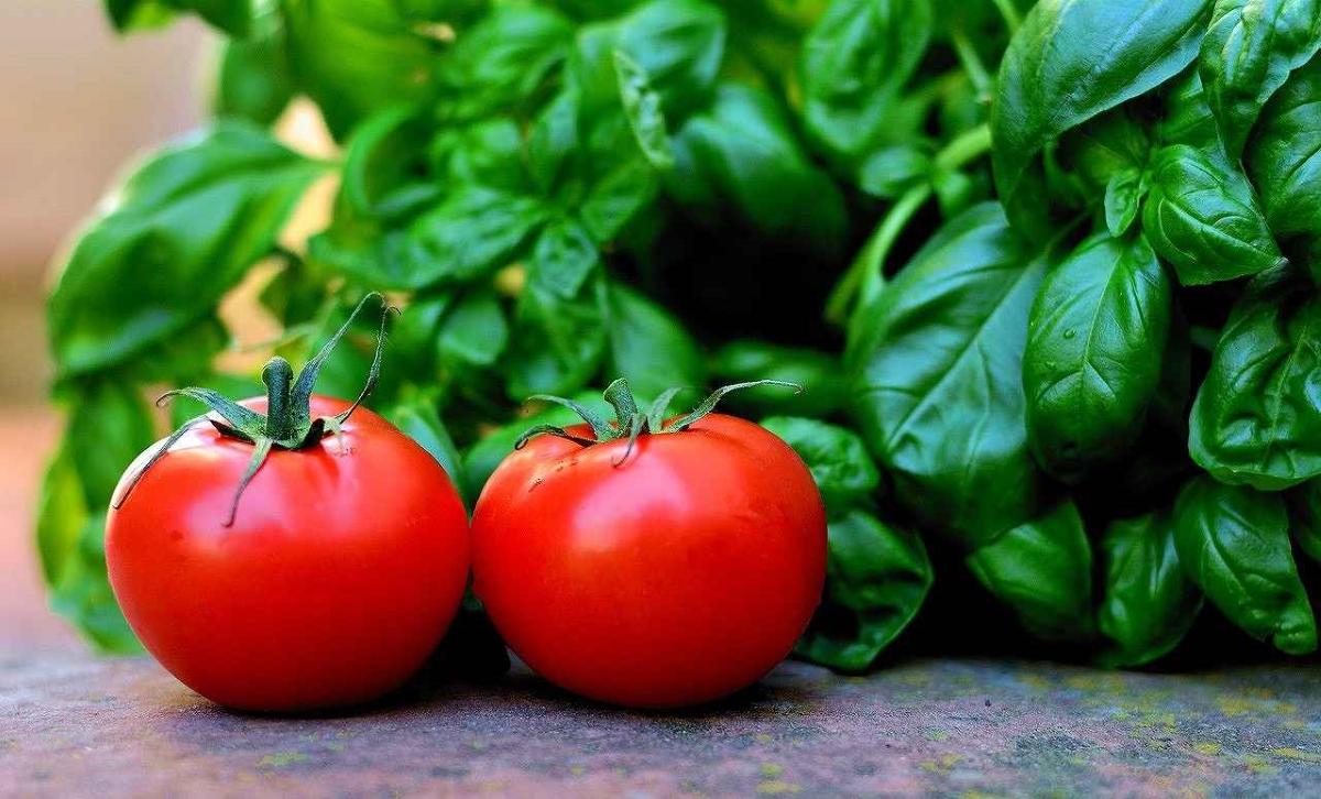 完熟トマトが2個置いてある