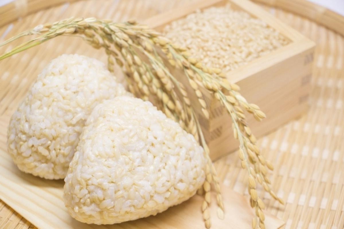 玄米 ご飯 おにぎり